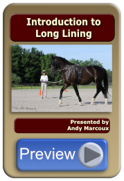 Introduction to Long Lining