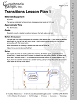 Transitions Lesson Plan 1
